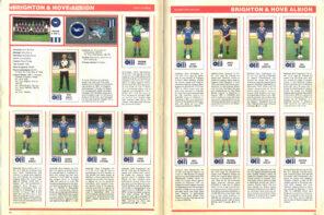 Brighton & Hove Albion 1983
